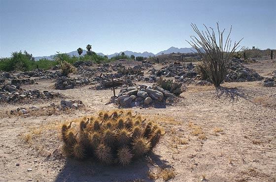 Ehrenberg, Arizona